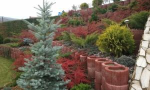 Lucrari de sezon - toamna in gradina