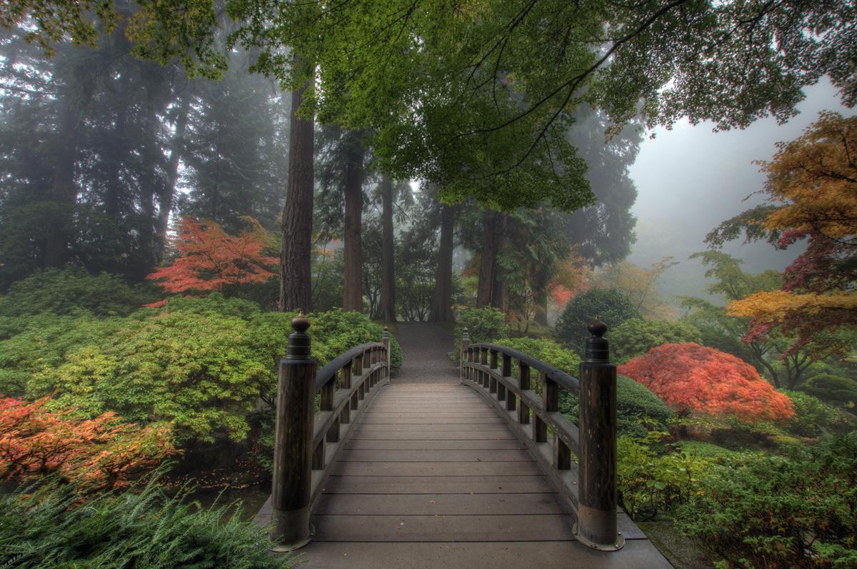 Amenajari gradini speciale firma de amenajari gradini si curti for Japanese garden portland oregon