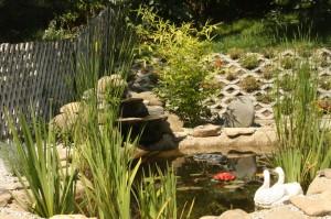 Iazuri de gradina, cascada ornamentala
