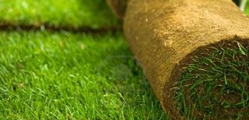 Rulou gazon - servicii peisagistice