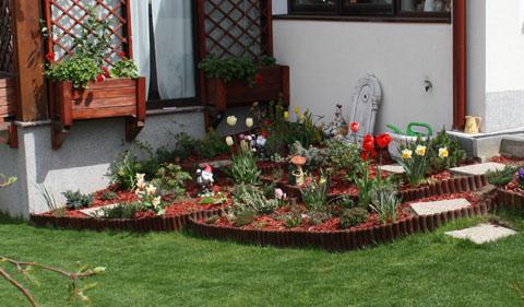 Amenajare spatiu cu plante decorative