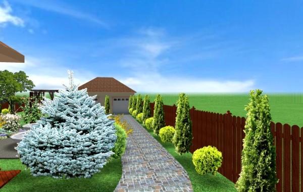 Proiect de amenajare gradina 3D, Tarnaveni