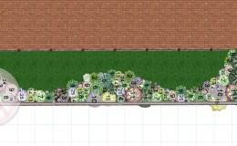 plan de plantare 1