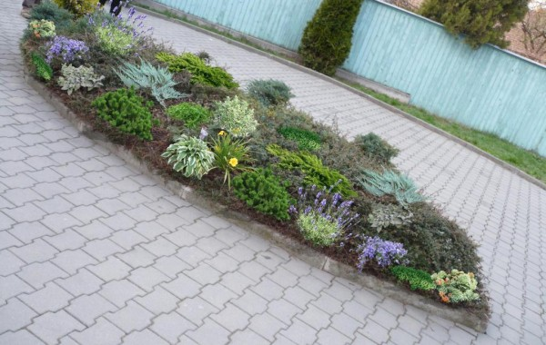 Amenajare rondou mic cu plante ornamentale