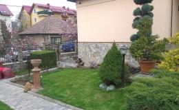IMAG0671